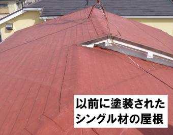 塗装されたシングル屋根