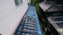 下屋根部分は、上から何か落ちてきたのか割れが多数見られます。