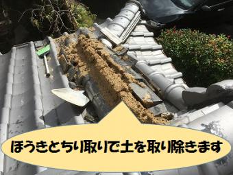 土を取り除く