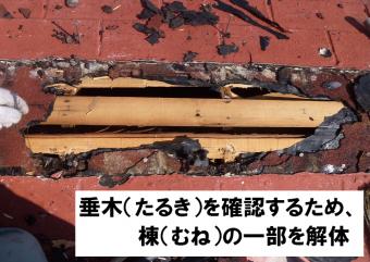 垂木を確認するため一部棟解体
