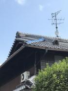 昨年の台風21号で飛散した隅棟、落ちそうな瓦を取り除いてシート養生がしてあります