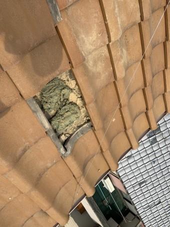 寝屋川市地瓦修理