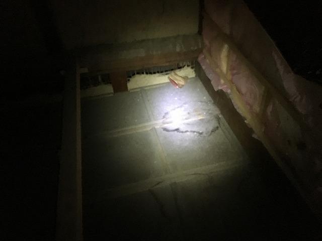 雨漏りの調査で天井裏にあがり点検