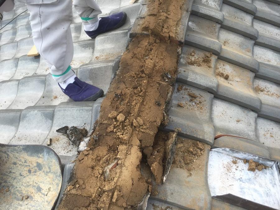 棟の葺土が湿っています。