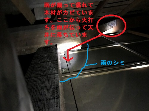 天井裏で雨漏りを確認