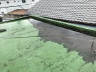屋上の雨水が流れなく水たまりになってます。