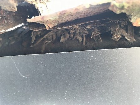 鋼鈑に裏側に雨が伝い木材が朽ちています。