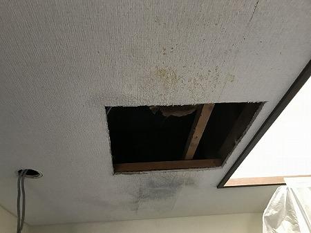 天井に点検口の穴を開けました。