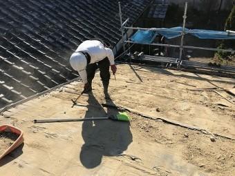 最後はホウキで掃きながら細かい土を取っていきます。