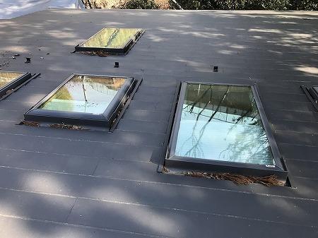 天窓に枯葉が積もっていますね。