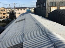 屋根は一見キレイなんですが、、