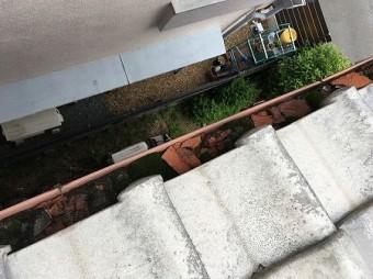 樋にも凍て割れで割れた瓦の破片が溜まっています。