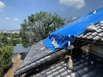 大屋根は全体的にシートが掛けられています。