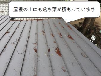 守口市 屋根の上に落ち葉が積もっている