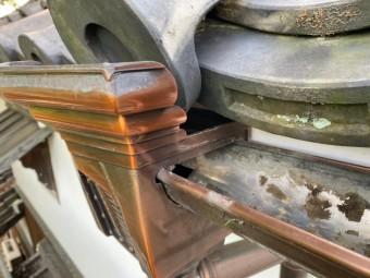 集水器部分の樋のゴミも取り除きます。