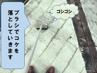 高槻市 コケをブラシで掃除します