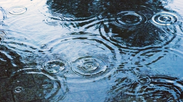 雨 水たまり 素材