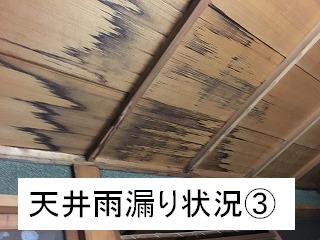 天井の雨漏り状況3