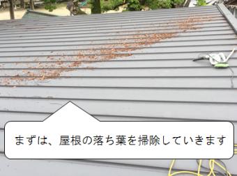 守口市 屋根の落ち葉掃除