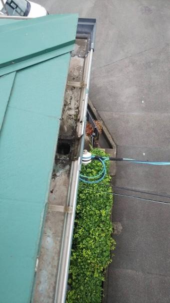 集水器のゴミを取り除きました。