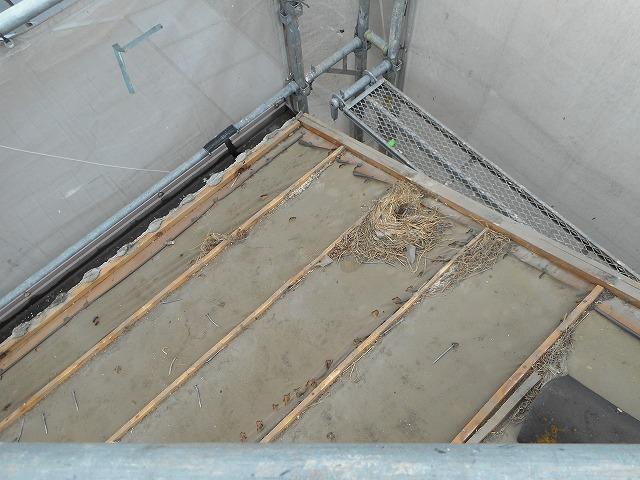 瓦の、隙間から鳥が入って巣などを作ることがあります。