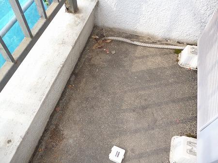 排水口も小さく詰まりやすい