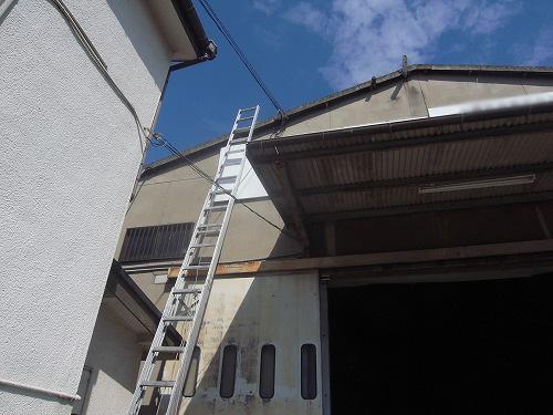梯子が届く高さでした。