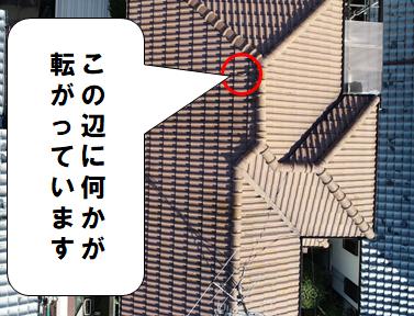 交野市 屋根に何かが転がっています