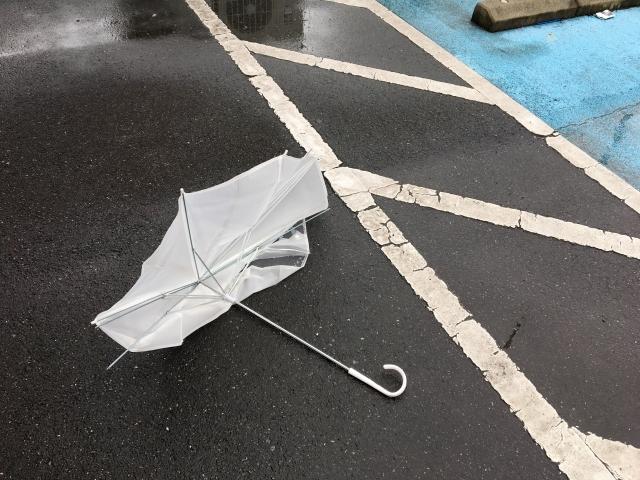 台風の画像 大雨