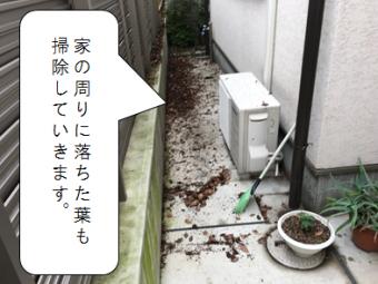 守口市 家の廻りの落ち葉掃除