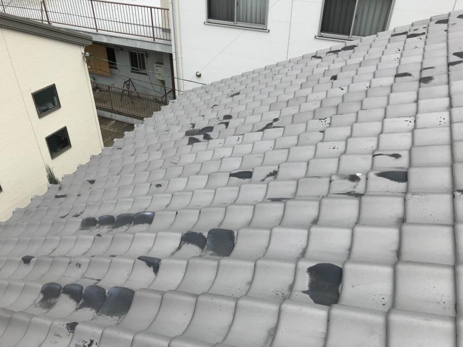いぶし瓦屋根点検