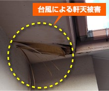 保険対象被害:台風による軒天被害